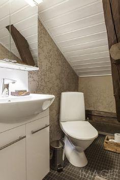 Sisustus  - WC - Perinteinen