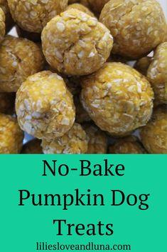 Easy Pumpkin Dog Treats - Easy no-bake pumpkin dog treat your dogs will love. Soft Dog Treats, Frozen Dog Treats, Puppy Treats, Diy Dog Treats, Homemade Dog Treats, Healthy Dog Treats, No Bake Dog Treats, Pumpkin Dog Treats Homemade, Pumpkin Recipes For Dogs