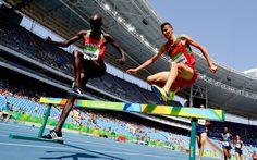 Drüber da! Im Hindernislauf müssen sich die Olympioniken über Hürden und durch...