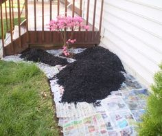 Newspaper used in full sheets is a good weed blocker. Use a thickness of two to four sheets. Whether using it shredded or whole, newspaper usually needs to be topped off with another mulch to keep the wind from blowing it away.