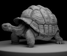 Eoin Cannon's Sketchbook: Galpagos Giant Tortoise WIP #4  I've done some more sculpting on this model and also mapped the pieces of the model and exported some low res displacement maps to test that things are working as they should be. I've comped the wireframe over the top to show the underlying geometry. I'm looking forward to texturing this guy now although there is a fair bit of cleaning up and sculpting to do in Zbrush first.