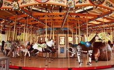 Conservation Carousel