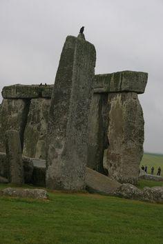 Adults dating are we gonna do stonehenge history encyclopedia