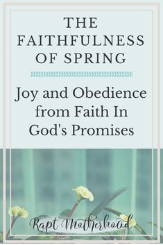 Spring is a great reminder and picture of God's faithfulness - How can you find joy and be more obedient to God's word? Remember His faithfulness to past promises and hope in the future #faith #Godspromises #raptmotherhood