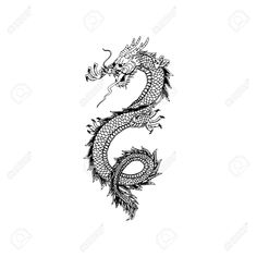 Chinese dragon tattoo design Stock Vector - 77529172 dragon tattoo tattoo tattoo designs tattoo for men tattoo for women tattoo tattoo tattoo tattoo tattoo tattoo tattoo tattoo ideas big dragon tattoo tattoo ideas Small Dragon Tattoos, Dragon Tattoo For Women, Dragon Tattoo Designs, Small Tattoos, Dragon Tattoo Female, Dragon Tattoo On Foot, Oriental Dragon Tattoo, Chinese Dragon Tattoos, Chinese Dragon Drawing
