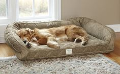 Deep Dish Dog Bed Our memory foam dog beds let your companion relax in superb luxury. orvis.co.uk