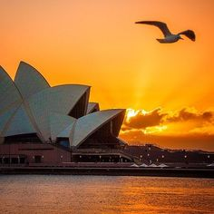 See a Performance at the Sydney Opera House in Australia