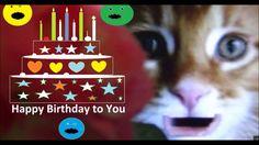 Cute Kitten Happy Birthday Wishes Card Message