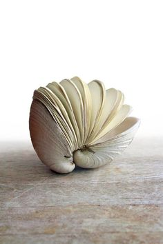 """Handstitched Clamshell Book Sculptures by Odelae """"An ode to the Salish Sea…. from a butter clam shell (Saxidomus giganteus) discovered on the ocean floor off the coast of Orcas Island, a beautiful and sculptural clam shell hand-bound book. A little taste of mama ocean that will fit comfortably in the palm of an adult sized hand."""""""