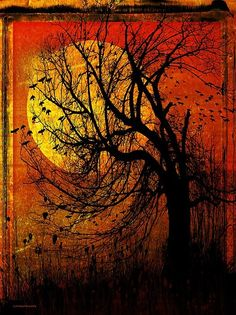 Pagan Pagan Pagan Pagan Witchcraft Witchcraft Witchcraft Witchcraft Witch Witch Witch Witch