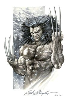 Feral Wolverine by Felipe Massafera Marvel Wolverine, Hq Marvel, Logan Wolverine, Marvel Comics Art, Marvel Comic Universe, Marvel Heroes, Comic Book Characters, Marvel Characters, Hero Arts