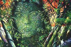 Do Plants Have Consciousness?