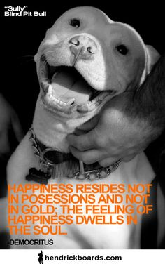 Happiness resides not in possessions, and not in gold, happiness dwells in the soul. -Democritus www. I Love Dogs, Puppy Love, Dog Lover Gifts, Dog Lovers, Animals And Pets, Cute Animals, Pit Bull Love, Pitbull Terrier, Dogs Pitbull