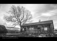 Café cottage... - Pinned by Mak Khalaf Café cottage Äskhults by... Black and White CafèCoffeeNDarchitecturebuildingcloudscottagefilterhousenikonoldtamrontrees by Cobra65