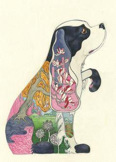 animal paintings watercolors Daniel Mackie 2