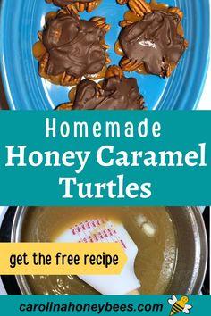 Honey Caramel, Honey Chocolate, Chocolate Turtles, Chocolate Caramels, Chocolate Treats, Cooking With Honey, Turtle Recipe, Turtles Candy, Honey Recipes