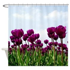 Floral Shower Curtain - purple, tulips