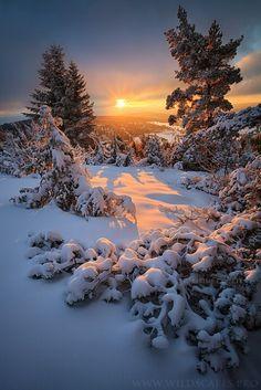 Gorgeous sunset~