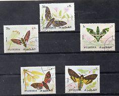 Emiratos-Arabes-Fauna-Mariposas-CH-815