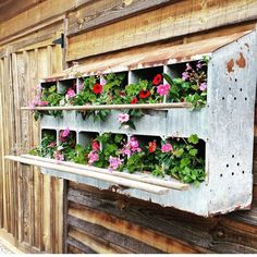 Gardening With Containers I am crushing hard on these beautiful old nesting boxes billowing with pretty flowers. For more lovely eye candy ahnnd barn/junk sale dates… - Diy Garden, Wooden Garden, Garden Projects, Garden Art, Garden Design, Home And Garden, Garden Sheds, Garden Junk, Upcycled Garden