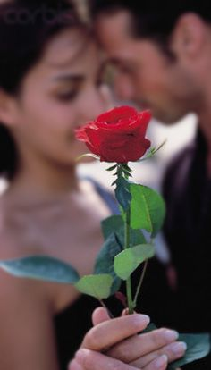 Her luxe indulgences...a single red rose will do...xoxo