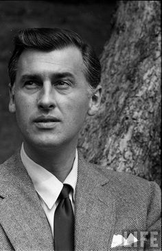 Stewart Granger is anyone this gorgeous?  Totally my all time favourite squeeze....& that voice......flutter my heart...
