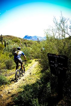 www.littlevendorathletics.com Mountain Biking