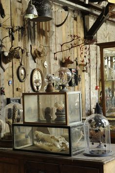This Ivy House… The possibilities of containment of specimens or samples of created, fictional pieces is what I think about when looking at this. Tableaux D'inspiration, Steampunk, Cabinet Of Curiosities, Natural Curiosities, Curiosity Shop, Curiosity Rover, Ivy House, Witch House, Beltane