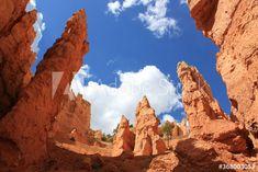 bryce canyon national park – kaufen Sie dieses Foto und finden Sie ähnliche Bilder auf Adobe Stock | Adobe Stock Bryce Canyon, Monument Valley, Mount Rushmore, National Parks, Mountains, Nature, Photography, Travel, Image