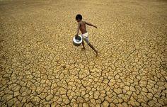 """Per quanto possa non piacere al settore """"high-tech"""", l'India resta soprattutto una """"monsoon economy"""", un'economia rurale dipendente dai monsoni che, ogni anno, colpiscono il paese. Nel 2009, una deludente stagione delle pioggie - la più debole dal 1972 - ha influito pesantemente sulla produzione agricola, obbligando le autorità a prevedere, per la prima volta da venti anni, la necessità di importazioni di riso nel 2010. La debolezza del monsone...    Continua..."""