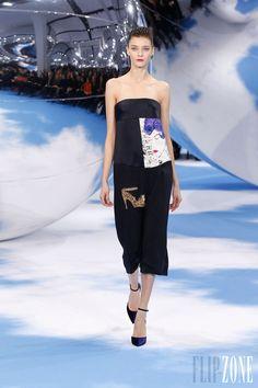 Christian Dior - Ready-to-Wear - Fall-winter 2013-2014