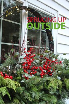 Christmas arrangements for urns, containers and window box from The Impatient Gardener