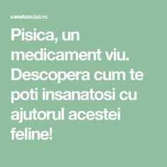 Pisica, un medicament viu. Descopera cum te poti insanatosi cu ajutorul acestei feline! How To Get Rid, Health Fitness, Math, Healthy, Plant, Embroidery, Health, Math Resources, Health And Fitness