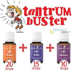 "Young Living Essential Oils: Temper Tantrum ""20 drops of Orange, 15 drops of Valor, 10 drops of Release. I put them in an empty 5ml Valor bottle, topped it off with carrier oil, like V6 and then popped on a roller top."""