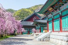 Gyeongbokgung Palace, Korea puzzle in Castles jigsaw puzzles on TheJigsawPuzzles.com. Play full screen, enjoy Puzzle of the Day and thousands more.