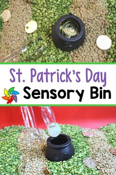 This lucky sensory bin is an inexpensive, fun way to celebrate St. Patrick's Day. Students get to practice their pincer grasp and strengthen their hand muscles using the tongs. Students can also practice pouring, scooping, filling, dumping, and grabbing. What a fun sensory experience! #sensorytable #stpatricksday #preschoolactivities 5 Senses Preschool, Preschool Decor, Preschool Art Projects, Preschool Lesson Plans, Preschool Classroom, Motor Activities, Sensory Activities, Preschool Activities, Sensory Table
