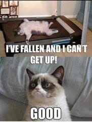 I've fallen