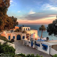 tunisia top 10 countries to visit cassie de pecol Sidi Bou Said, Top Countries To Visit, Places To Visit, Travel And Tourism, Travel Destinations, Top Country, World Peace, North Africa, Travel Advice