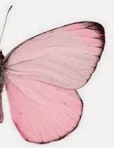 Image uploaded by The Butterfly. Find images and videos about photography, pink and butterfly on We Heart It - the app to get lost in what you love. Pink Love, Pale Pink, Pretty In Pink, Pink Color, Colour, Color Rosa, Pink White, Lr Beauty, Whatsapp Pink