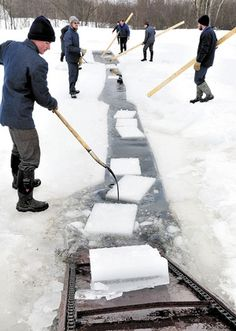 Three Maine towns have small Amish communities: Smyrna, Easton (Fort Fairfield) and Unity. Here they are cutting ice for refrigeration use in the Palmer Hill Farm Dairy in Thorndike, Maine.