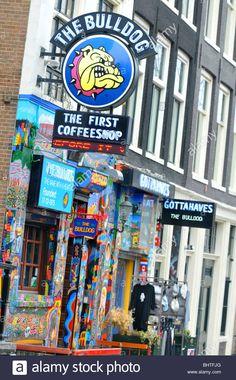"Amsterdam, The Bulldog ""Coffee Shop"" Amsterdam, Holland, Niederlande ... Coffee Shop, Amsterdam Holland, A 17, Illustration, Stock Photos, Shopping, Netherlands, Coffee Shops, Coffeehouse"