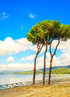 Read 30  Follonica travel tips, plan your travel with Venere and enjoy your vacation in Follonica, Italy