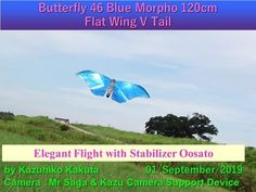 Butterfly 46 Blue Morpho Flat Wing V Tail: Elegant Flight with Stabilizer at Oosato Robot Bird, Blue Morpho, Best Flights, Science And Technology, Wings, Butterfly, Film, Youtube, Movie