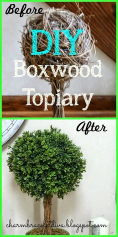 Charm Bracelet Diva {at Home}: DIY Boxwood Topiary Outdoor Topiary, Boxwood Topiary, Topiary Plants, Planters, Dyi Decorations, Pom Pom Tree, Home Crafts, Diy Crafts, Holiday Wreaths