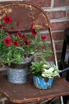 Make a trip to the thrift store, flea market, junk shop, wherever, and look around a bit. Think outside the box and see what you can find to upcycle into flower pots. Succulent Gardening, Container Gardening, Diy Recycle, Recycling, Glue Gun Projects, Bird Bath Planter, Faux Succulents, Upcycled Home Decor, Container Flowers