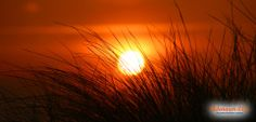 Sonnenuntergang, Adenauer & Co