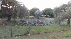 The Century Archaeological Church on Filerimos Mountain In Rhodes Greece Rhodes, Greece, Mountain, Island, Beautiful, Greece Country, Islands, Mountaineering