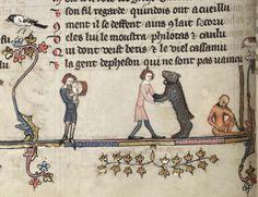Dancing bear in Oxford, Bodleian Library MS Bodley 264