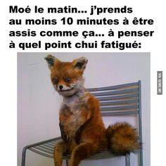 Quebecois