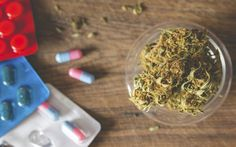 Find research on potential drug interactions between medical cannabis and antidepressants when both are used in a depression treatment plan.